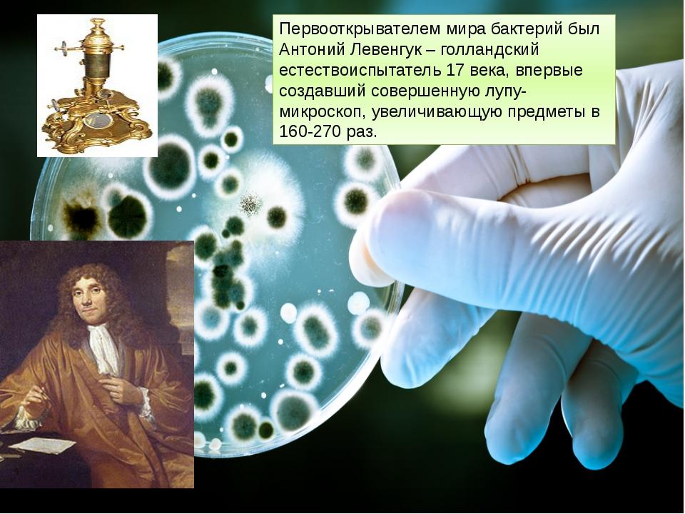 Первооткрывателем мира бактерий был Антоний Левенгук – голландский естествоис...