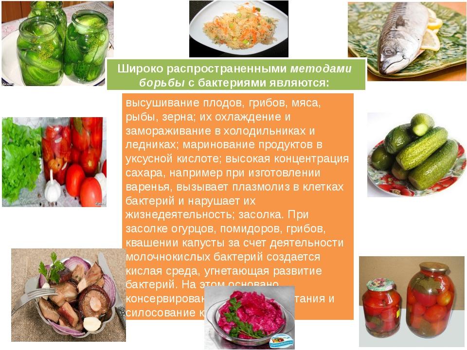 высушивание плодов, грибов, мяса, рыбы, зерна; их охлаждение и замораживание...