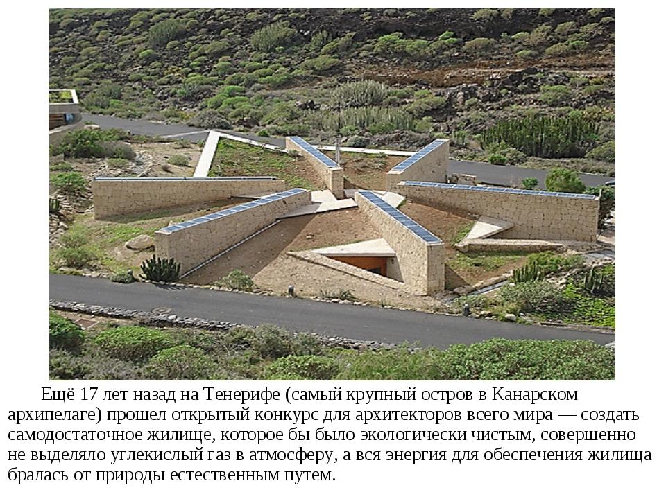 Ещё 17 лет назад на Тенерифе (самый крупный остров в Канарском архипелаге) пр...