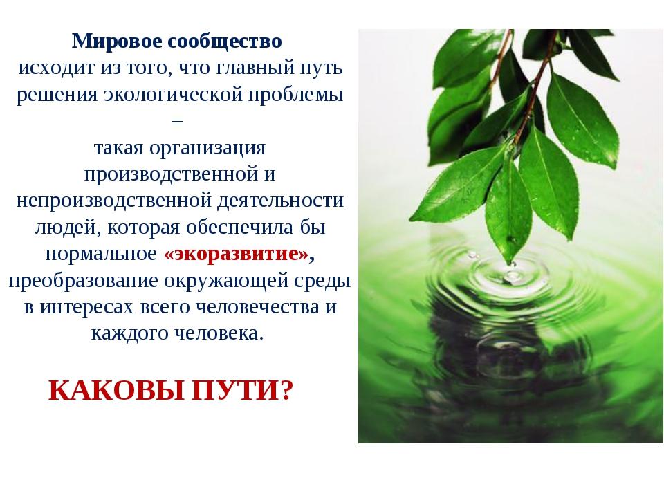 Мировое сообщество исходит из того, что главный путь решения экологической пр...