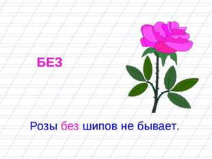 БЕЗ Розы без шипов не бывает.