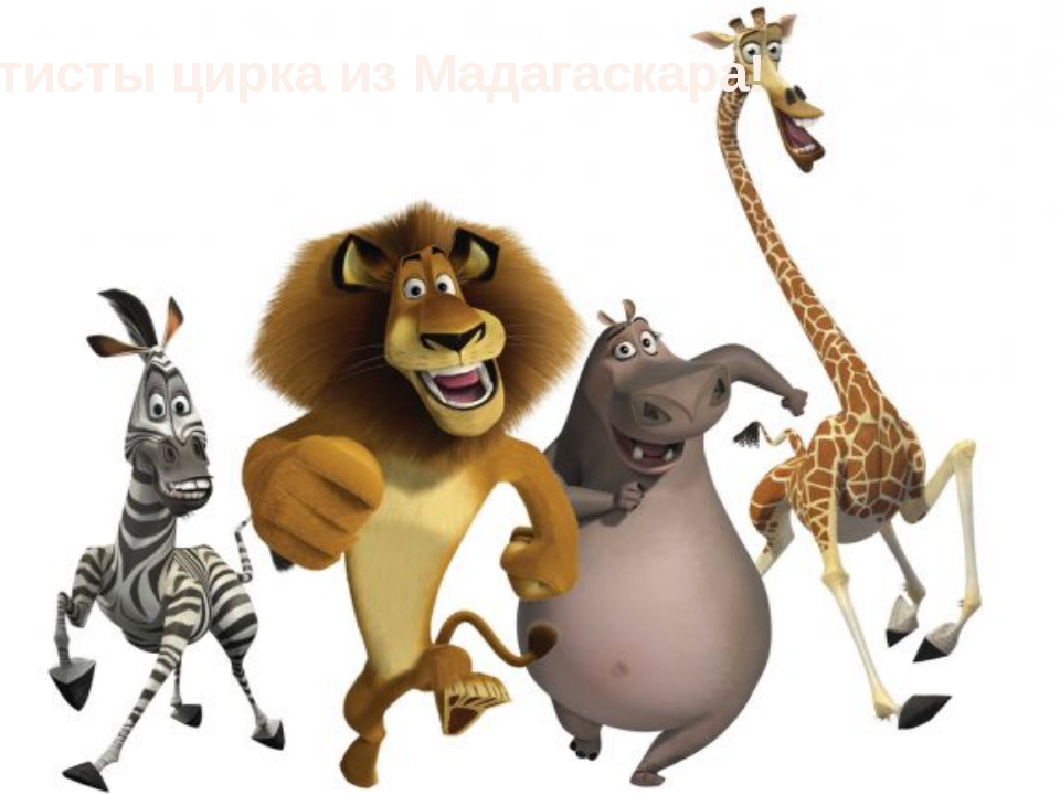 Артисты цирка из Мадагаскара!
