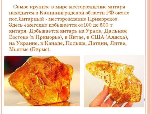 Самое крупное в мире месторождение янтаря находится в Калининградской област...