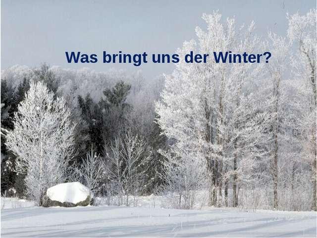 Was bringt uns der Winter?