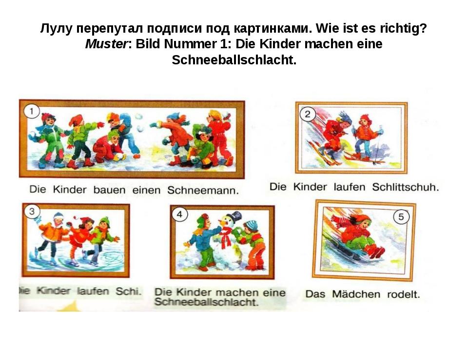 Лулу перепутал подписи под картинками. Wie ist es richtig? Muster: Bild Numme...