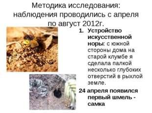 Методика исследования: наблюдения проводились с апреля по август 2012г. Устро