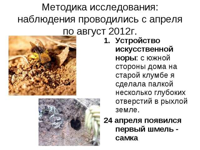 Методика исследования: наблюдения проводились с апреля по август 2012г. Устро...