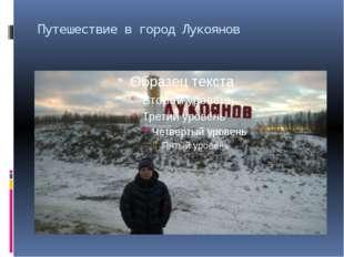 Путешествие в город Лукоянов