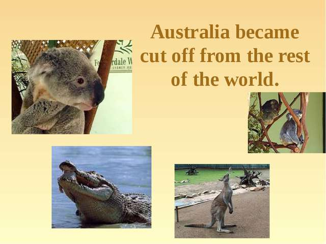 Australia became cut off from the rest of the world.