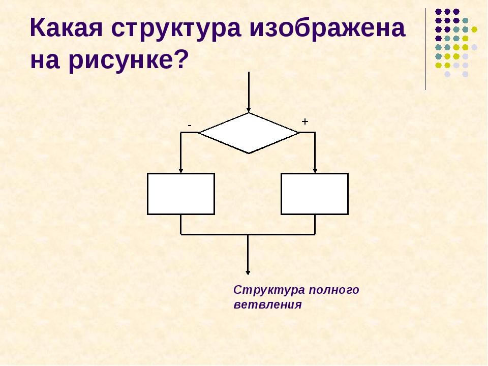 + - Какая структура изображена на рисунке? Структура полного ветвления