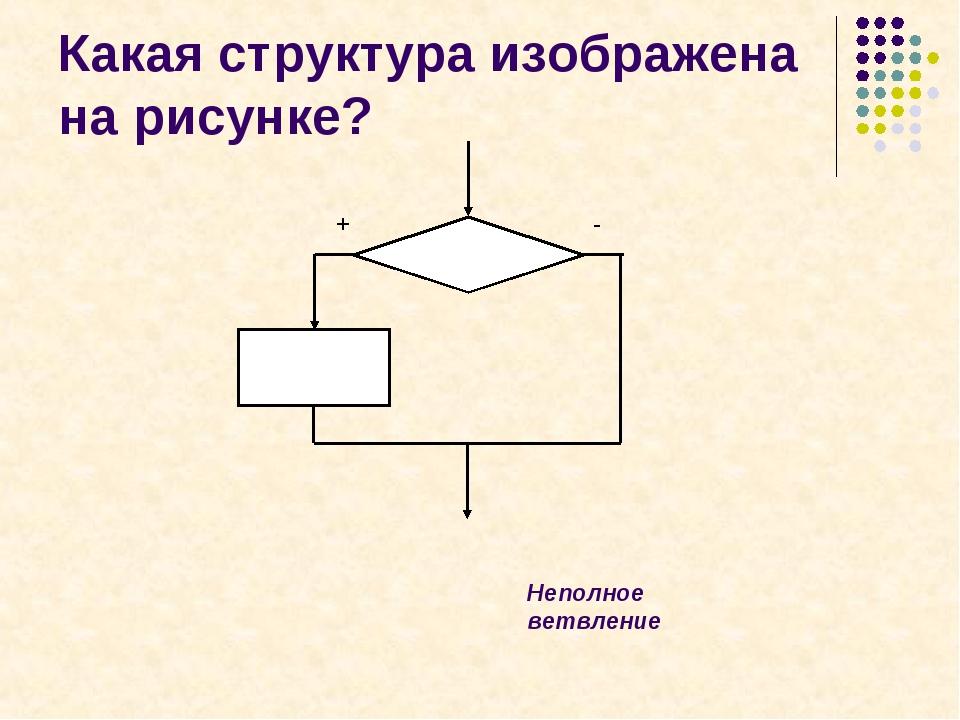 + - Какая структура изображена на рисунке? Неполное ветвление