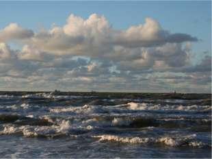 Балтийское море холодное? Т воды на поверхности в августе в Финском заливе 15