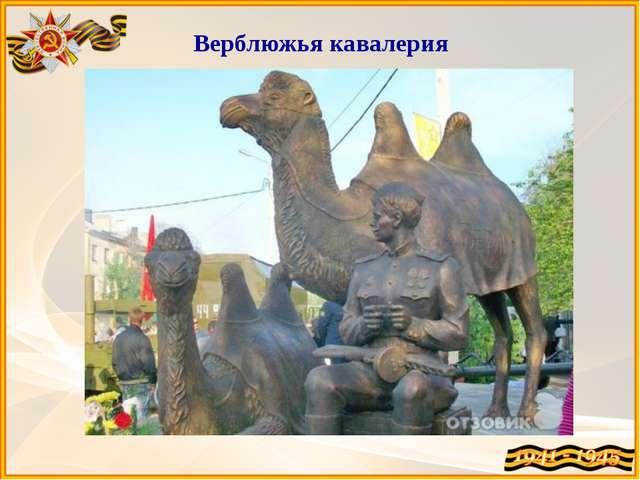 Верблюжья кавалерия В Астрахани была сформирована 28-я резервная армия, в со...