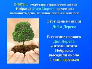 Этот день назвали Днём Дерева В течение первого Дня Дерева жители штата Небра
