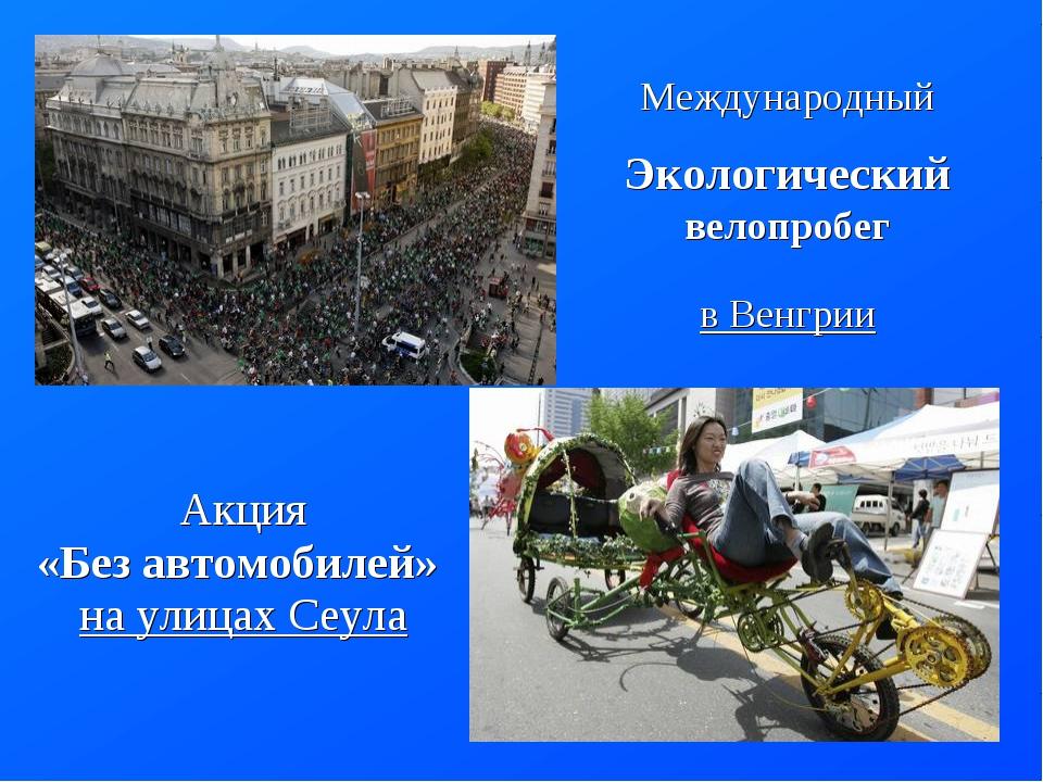 Международный Экологический велопробег в Венгрии Акция «Без автомобилей» нау...