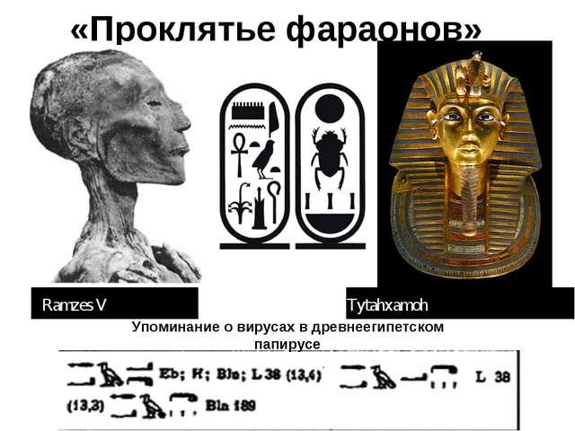 «Проклятье фараонов» Упоминание о вирусах в древнеегипетском папирусе Ramzes...