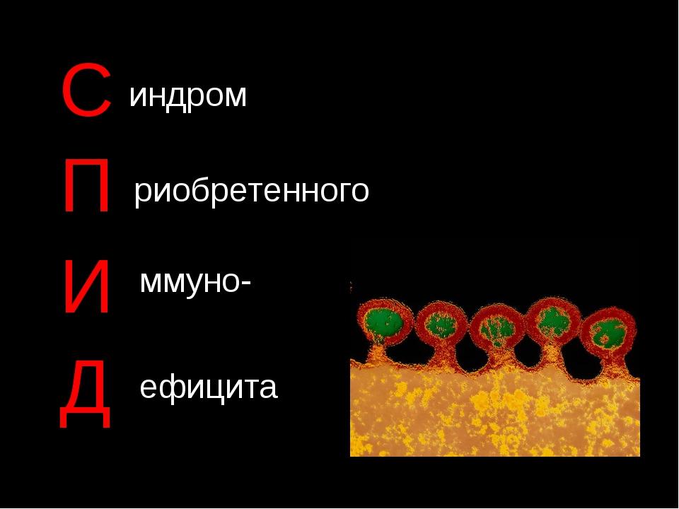 С П И Д индром риобретенного ммуно- ефицита