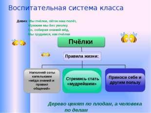Воспитательная система класса Наполняй соты капельками «мёда знаний и правил
