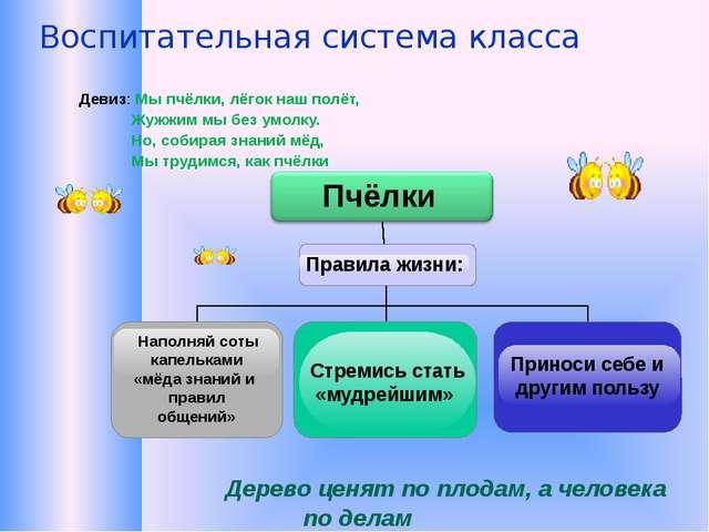 Воспитательная система класса Наполняй соты капельками «мёда знаний и правил...