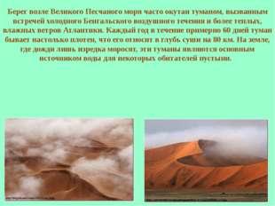 Берег возле Великого Песчаного моря часто окутан туманом, вызванным встречей