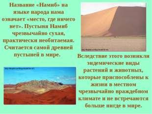 Название «Намиб» на языке народа нама означает «место, где ничего нет». Пусты