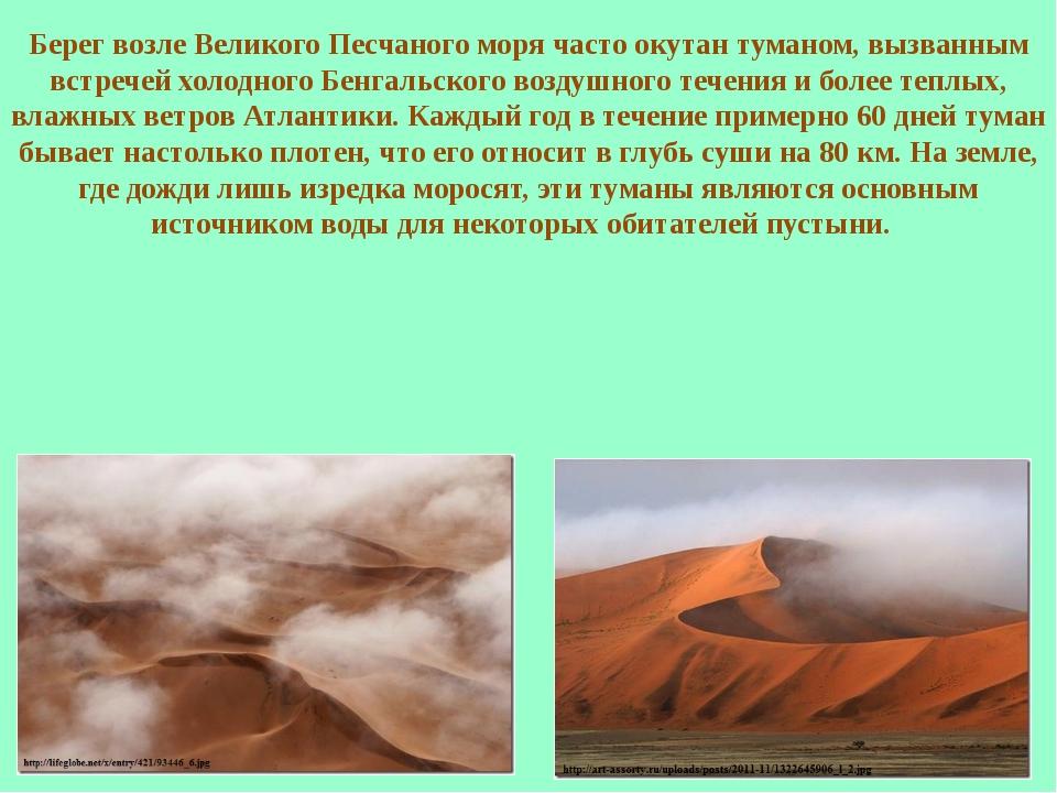 Берег возле Великого Песчаного моря часто окутан туманом, вызванным встречей...