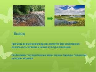 Вывод Причиной возникновения мусора является бесхозяйственная деятельность че