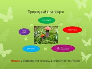 Природный круговорот Вывод: у природы нет отходов, а поэтому нет и мусора! ГУ
