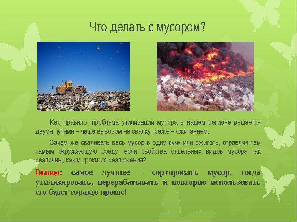Что делать с мусором? Как правило, проблема утилизации мусора в нашем регион...