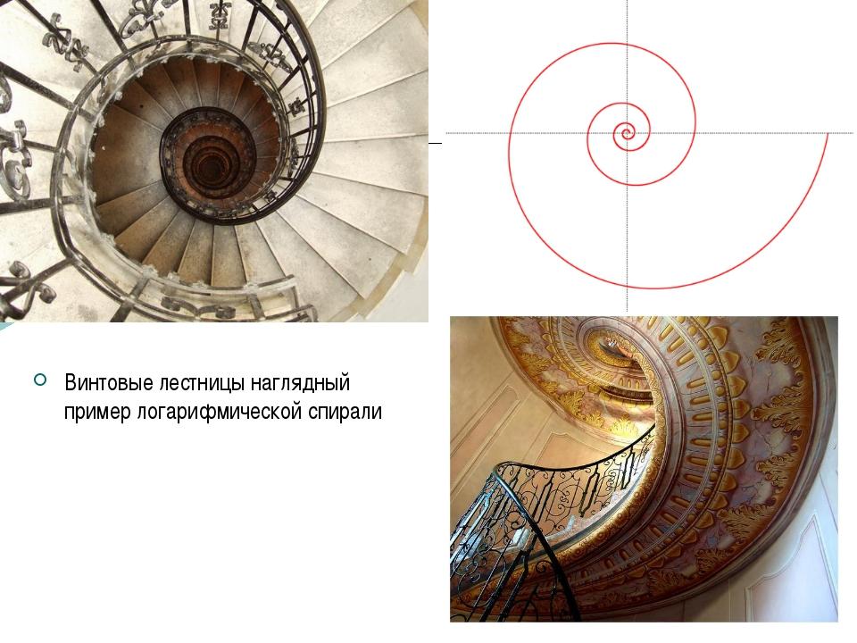 Винтовые лестницы наглядный пример логарифмической спирали к содержанию