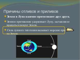 Причины отливов и приливов Земля и Луна взаимно притягивают друг друга. Земно