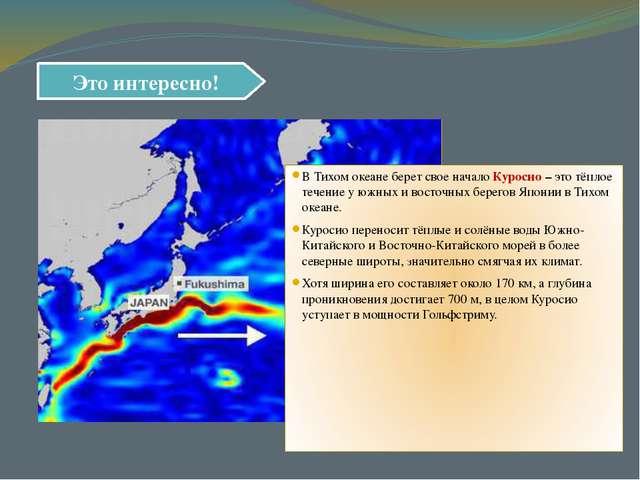 Это интересно! В Тихом океане берет свое начало Куросио – это тёплое течение...