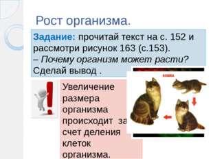 Рост организма. Задание: прочитай текст на с. 152 и рассмотри рисунок 163 (с.