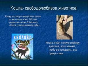 Кошка- свободолюбивое животное! Кошку не следует принуждать делать то, чего о
