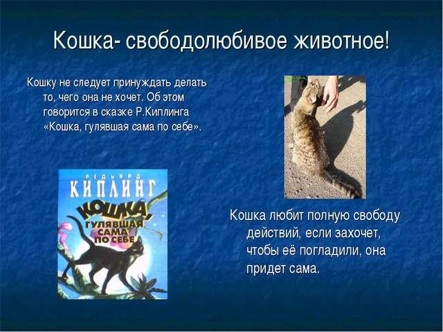 Кошка- свободолюбивое животное! Кошку не следует принуждать делать то, чего о...