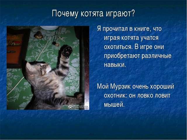 Почему котята играют? Я прочитал в книге, что играя котята учатся охотиться....