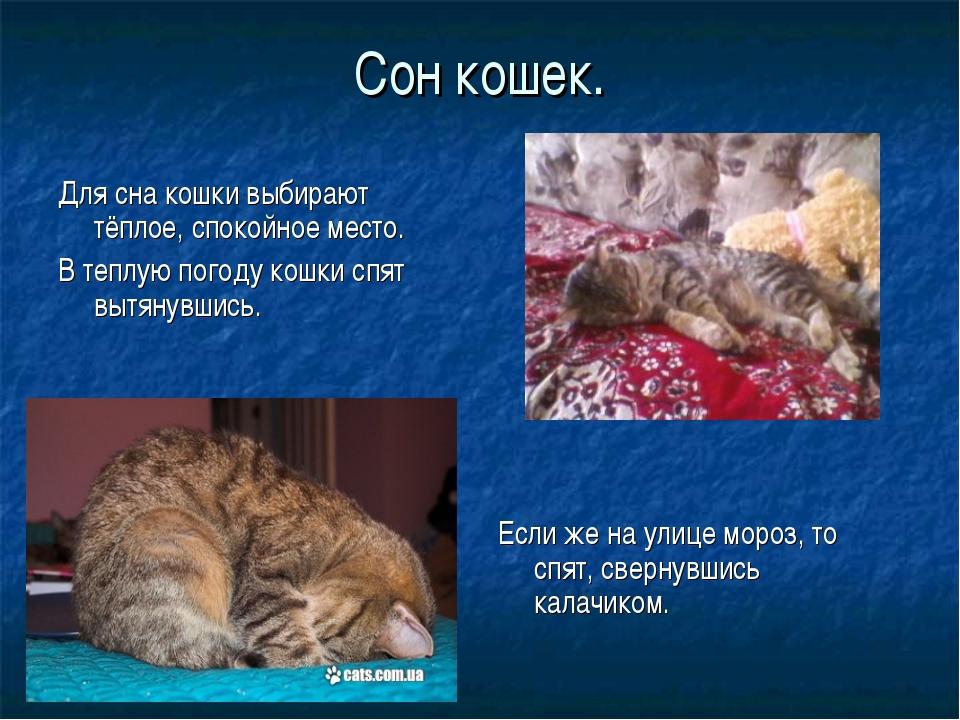 Сон кошек. Для сна кошки выбирают тёплое, спокойное место. В теплую погоду ко...