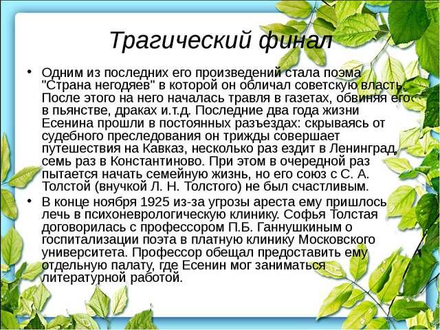 Декабрьским днем 1926 года на безлюдном Ваганьковском кладбище в Москве около...