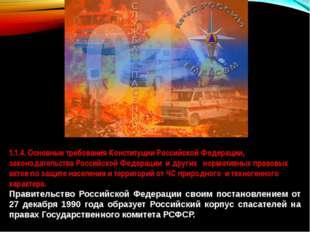 1.1.4. Основные требования Конституции Российской Федерации, законодательства
