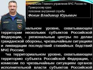 на региональном уровне, охватывающем территории нескольких субъектов Российск