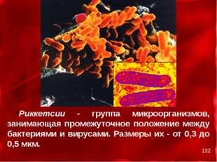 Риккетсии - группа микроорганизмов, занимающая промежуточное положение между