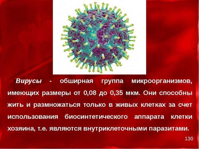 Вирусы - обширная группа микроорганизмов, имеющих размеры от 0,08 до 0,35 мк...