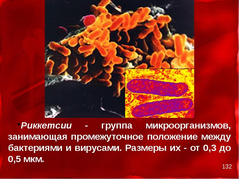 Риккетсии - группа микроорганизмов, занимающая промежуточное положение между...