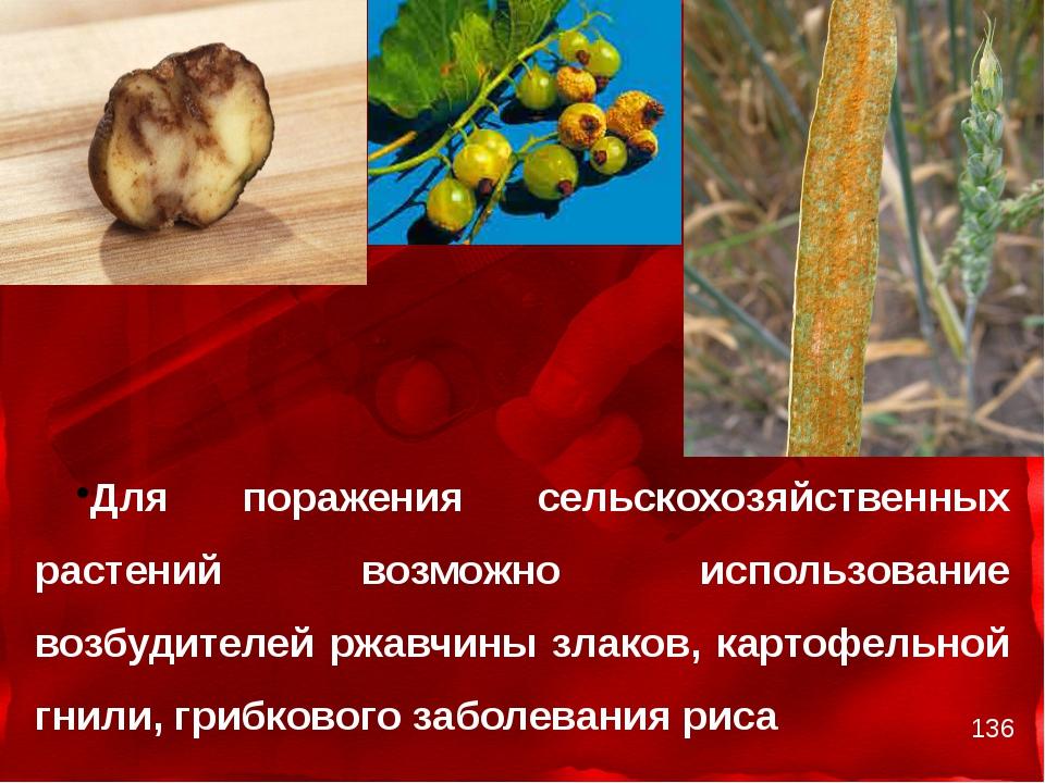 Для поражения сельскохозяйственных растений возможно использование возбудите...