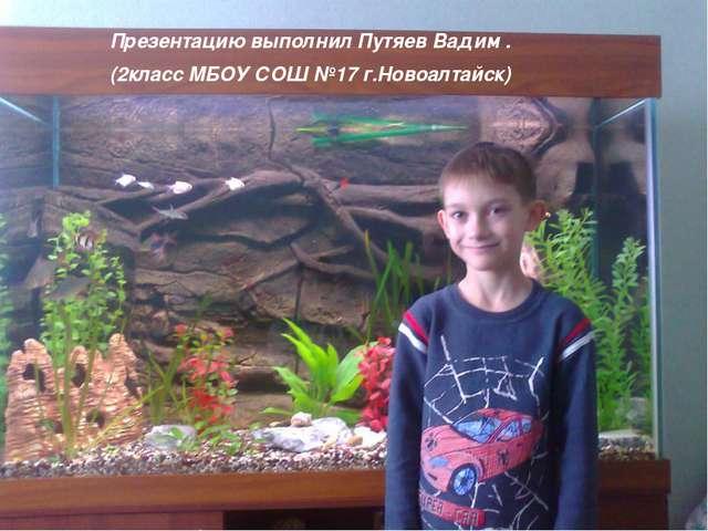 Презентацию выполнил Путяев Вадим . (2класс МБОУ СОШ №17 г.Новоалтайск)