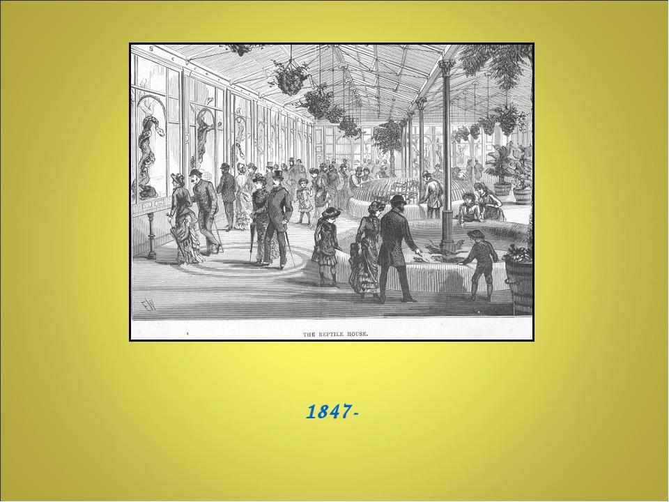 1847-