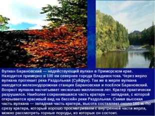 Вулкан Барановский— недействующийвулканвПриморском крае. Находится приме