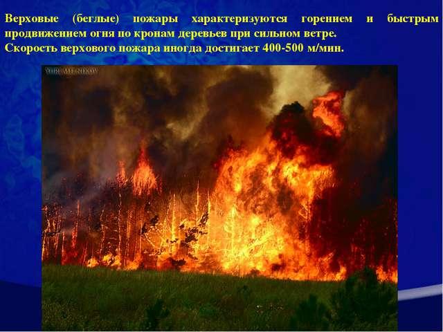 Верховые (беглые) пожары характеризуются горением и быстрым продвижением огня...