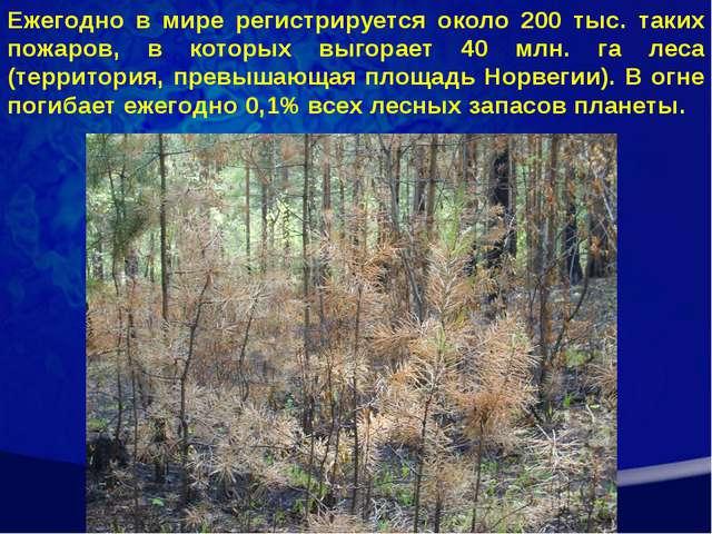 Ежегодно в мире регистрируется около 200 тыс. таких пожаров, в которых выгора...
