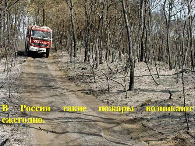 В России такие пожары возникают ежегодно.